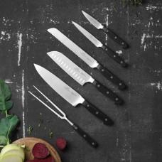 Lion Sabatier Pluton knife set, 6 parts