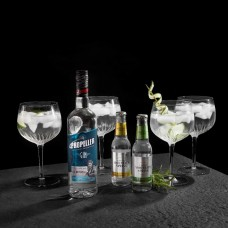 Gin set with 4 glasses