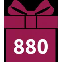 880 DKK